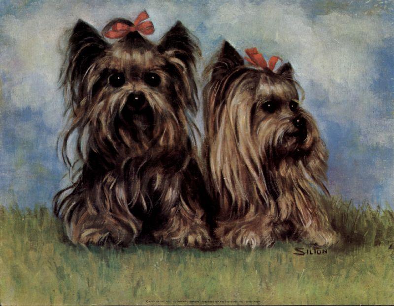 Deco Dog S Ephemera Toy Dogs